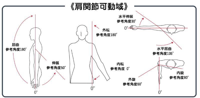 肩関節可動域